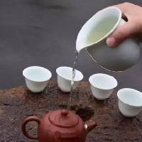 茶道基本泡茶品茶礼节