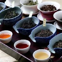 怎样开茶叶店?开茶叶店流程分享